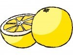 マイナスカロリーのグレープフルーツ